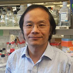 Ping Lu PhD